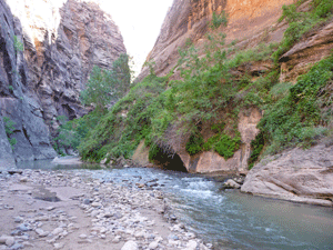 The Narrows Zion Stage 1