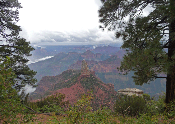 Mount Hayden viewpoint North Rim Grand Canyon