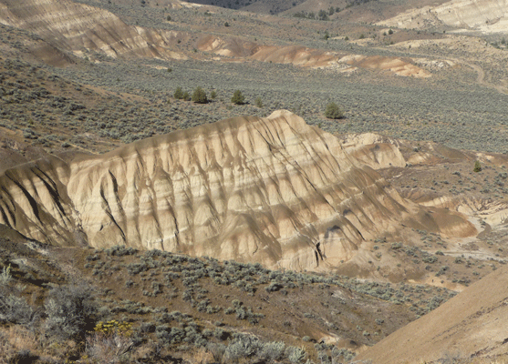 Mascall Formation John Day Fossil Beds OR
