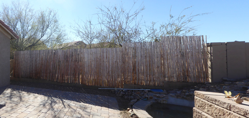 bleached bamboo fence