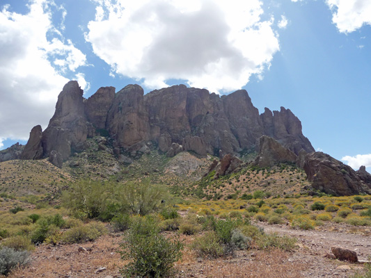Superstition Mts from Treasure Loop Trail