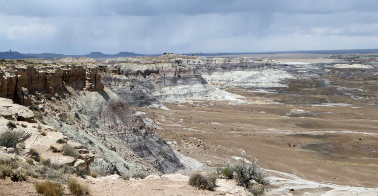 Blue Mesa Petrified Forest National Park