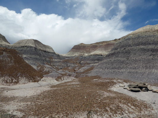 Blue Mesa Trail Petrified Forest National Park