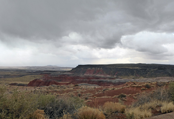 Painted Desert Petrified Forest NP