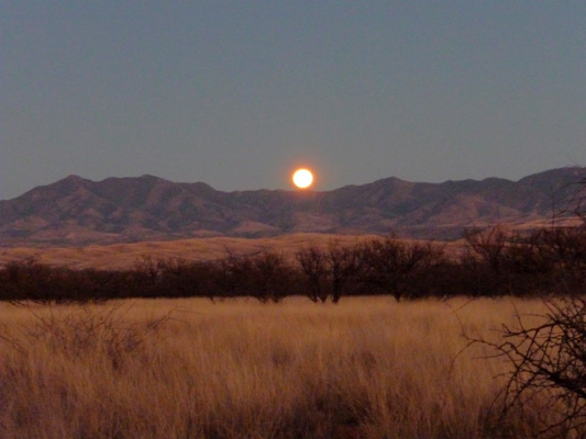 Moonrise over the Whetstone Mts