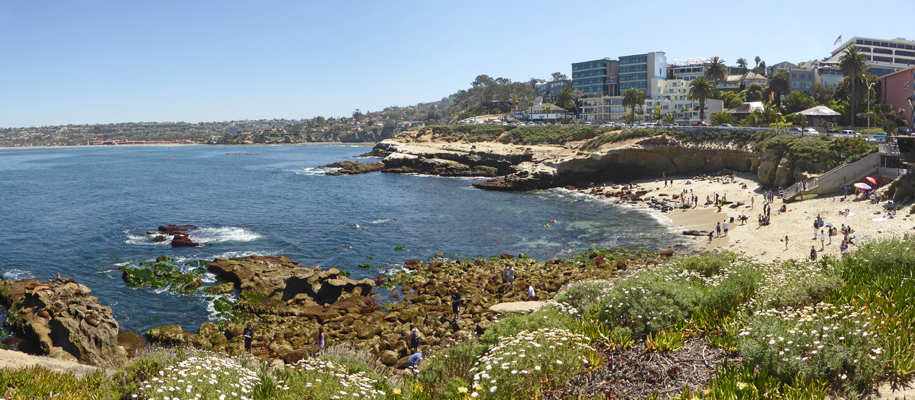The La Jolla Cove