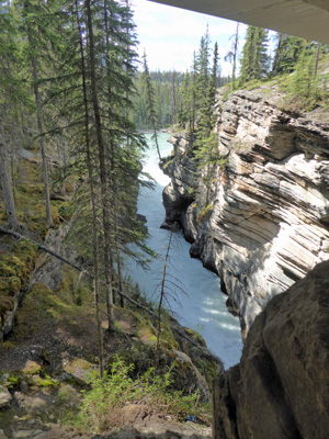 End of Athabasca Falls area