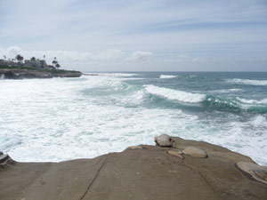 Surf south of the Children's Pool La Jolla CA