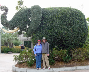 Tracy and Walter Cooke with elephant topiary at San Diego Zoo CA
