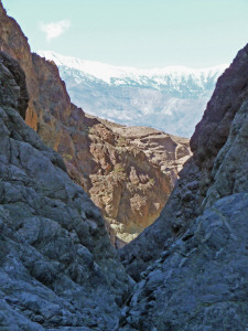 Willow Canyon Trail looking west from canyon Death Valley National Park CA