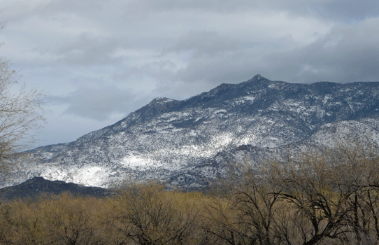 Snow on Catalina Mountains AZ