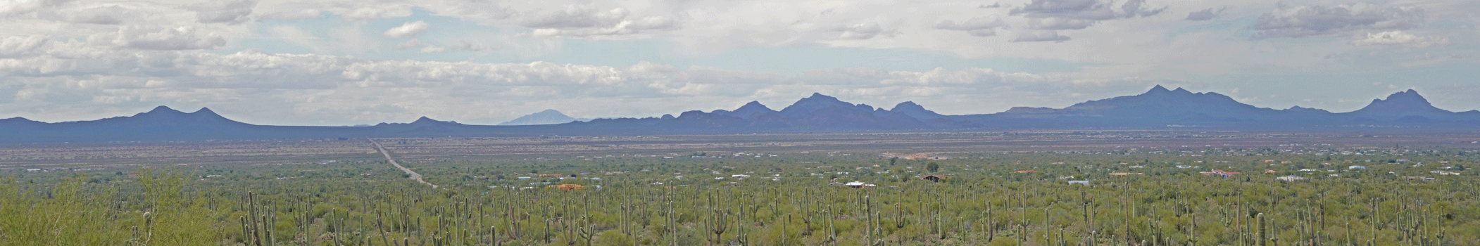 View westward from Signal Hill Saguaro National Park