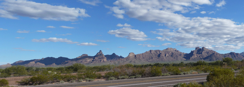 Rest stop view north of Organ Pipe National Monument