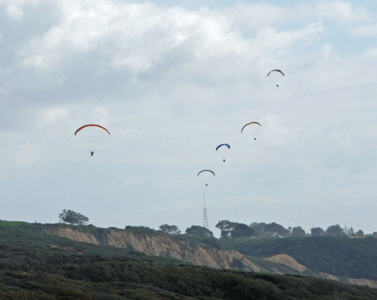 Paragliders Torrey Pines State Reserve CA