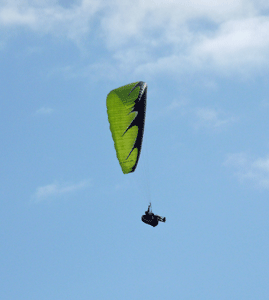 Paraglider Torrey Pines State Reserve CA