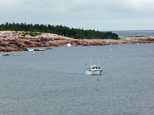 Lobster boat Cape Breton Highlands
