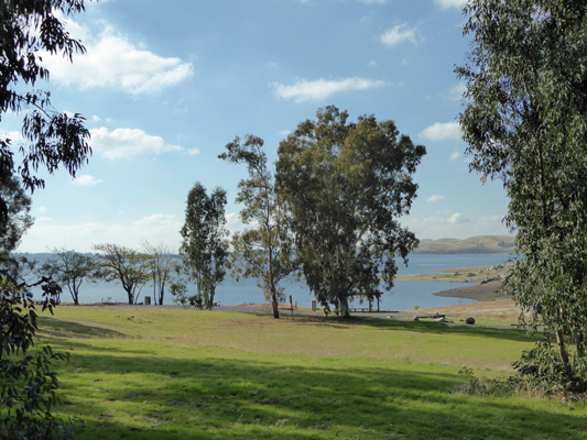Millerton Lake Meadow Campground view