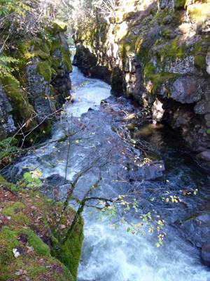 Rogue River Gorge OR