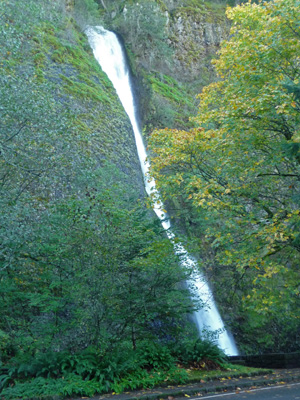 Horsetail Fall Columbia Gorge OR