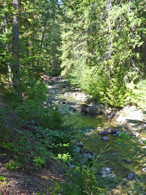 Creek on north end of Kachess Campground