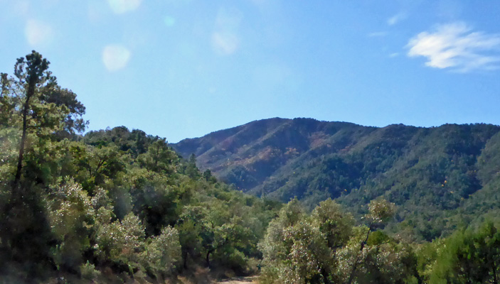 View from top Madera Canyon