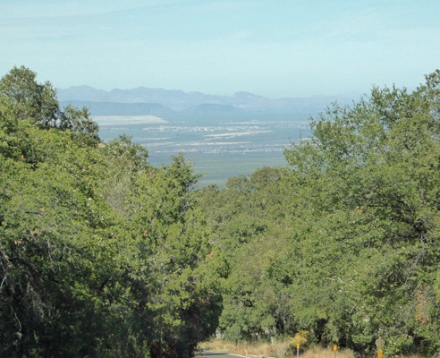 View across valley from Madera Canyon