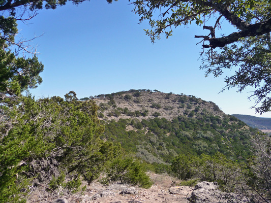 Old Baldy from the Foshee Trail