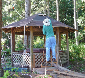 Walter Cooke sweeping needles off of gazebo roof
