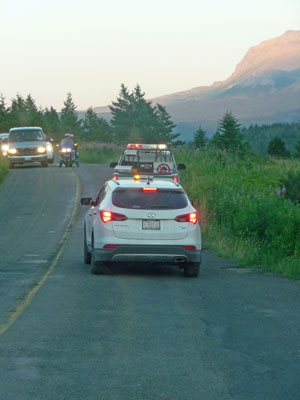 Rangers chasing bear with vehicles watching