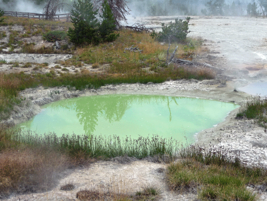 West Thumb hot spring Yellowstone