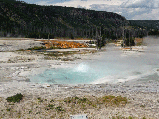 Spouter Geyser Black Sand Basin Yellowstone