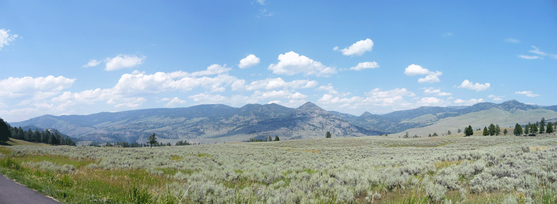 Panorama area west of Tower in Yellowstone