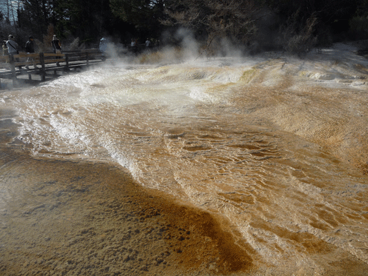 Upper Terrace of Mammoth Hot Springs