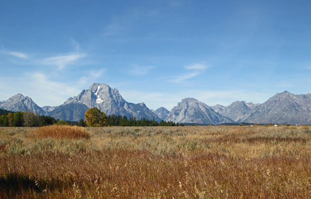 Oxbow Bend Road view