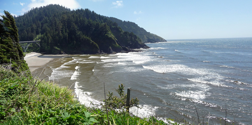 Looking south from Heceta Head