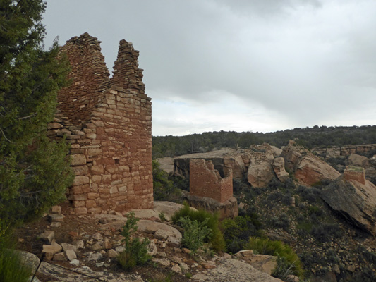 Holly Unit Hovenweep