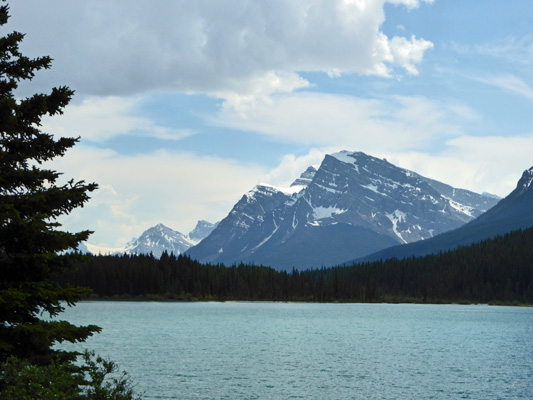 Waterfowl Lake Icefields Parkway