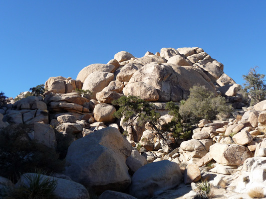 Trail out to Astrodomes Joshua Tree NP