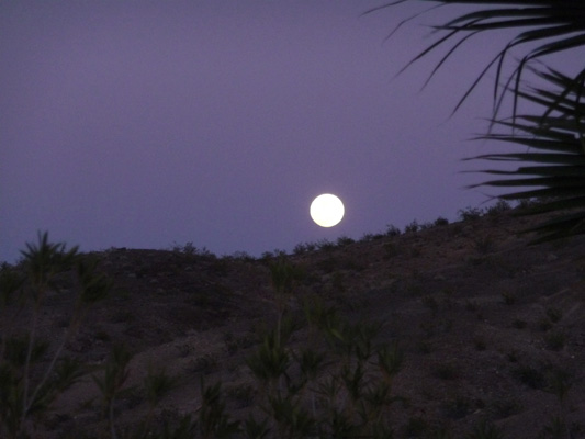 Almost full moon Callville Campground