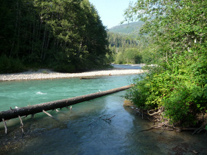 View of Nooksack River from campsite at Silver Fir Campground