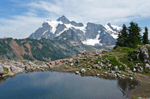 Mt Shuksan Picture Lake WA