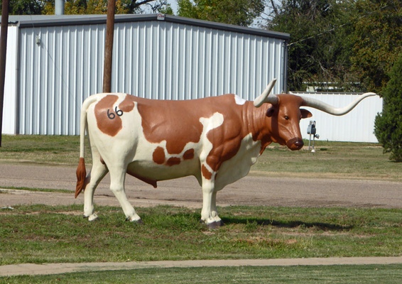 Longhorn with 66 brand