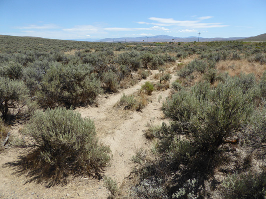 Oregon Trail ruts Baker City OR