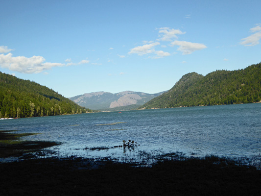 Rimrock Lake from Indian Creek Campground