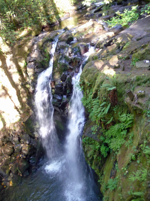 Majestic Falls from the top at McDowell Creek Falls Park OR