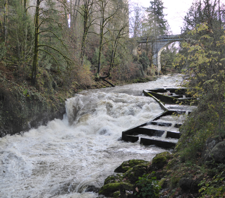 Middle Tumwater Falls and fish ladders