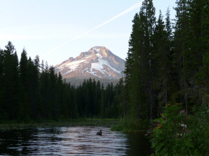 Mt Hood from Trillium Lake