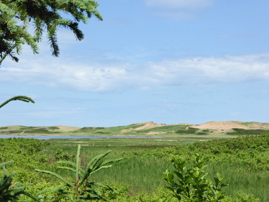 Sand dunes from Homestead Trail PEI