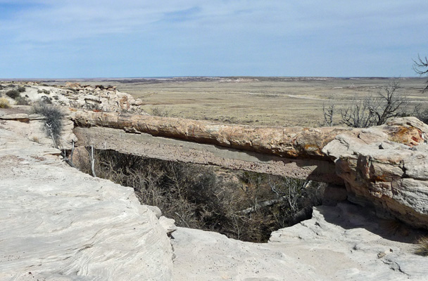 Agate Bridge Petrified Forest NP