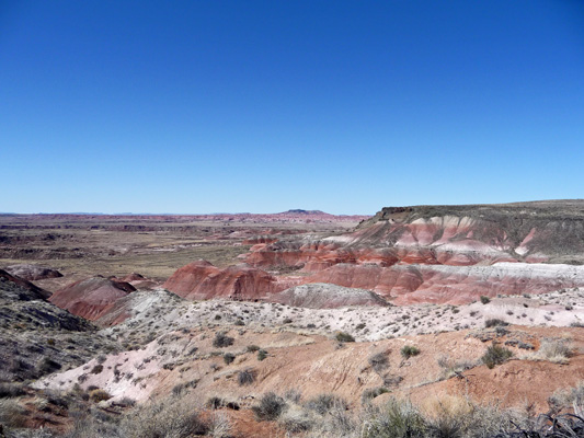 Nizhoni Point viewpoint Petrified Forest NP